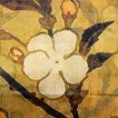 Wollschal Old Cherry Blossom